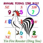 2017 Flying Star Chart #7 Star