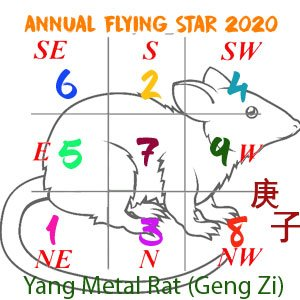 2020 Flying Star chart for year of the Rat